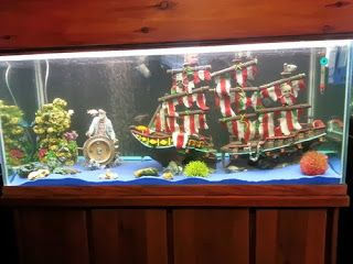 78 best images about fish tank decorations on pinterest for Asian fish tank decorations