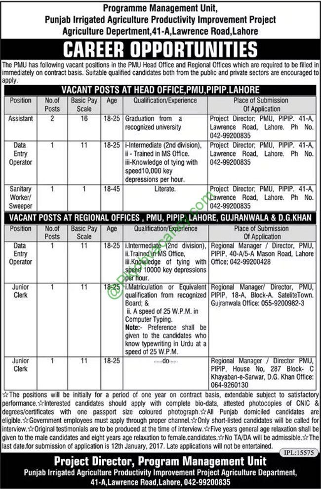 Assistants | Clerks | Data Entry Operators | Jobs Agriculture Department Government Of Punjab