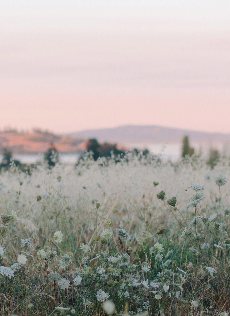 Fragen und Antworten zu Fotografen: Kelly in Victoria – Blog | Mieten Sie einen Urlaubsfotografen … – Linda Drache – #Antworten #Blog #einen #Fotogr…