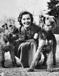 Maria Schell and her Airedales circa 1926 - Kopperas Kove Airedales