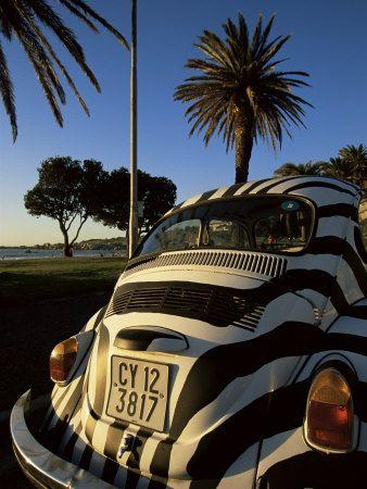 Curtiram este fusca zebrado? Pintura automotiva também pode ser arte e a Brasilux incentiva isso.