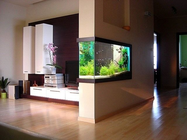Built-in aquarium. Looks gorgeous, but how do you maintain it?!?