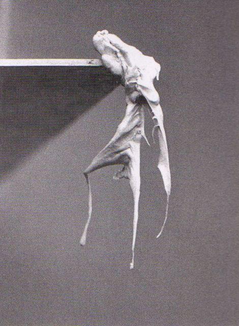 alina szapocznikow, fotorzeźby (photoskulptures), 1971, czarno-biała fotografia, guma do żucia