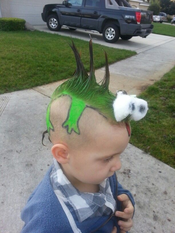 Crazy hair day at school. Made a lizard out of my sons ...