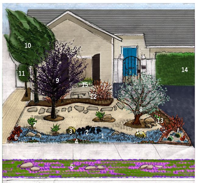 Xeriscaping California | Xeriscape Ninjas: Blog about xeriscaping their front yard.