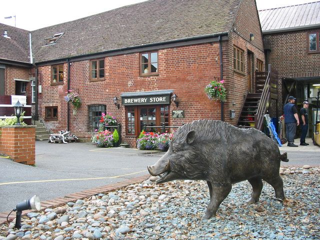 Ringwood, Hampshire.