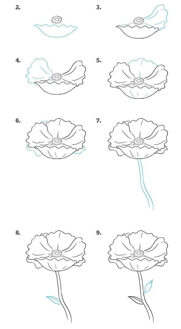 how to draw a flower step by step drawing diy tutorial white ...
