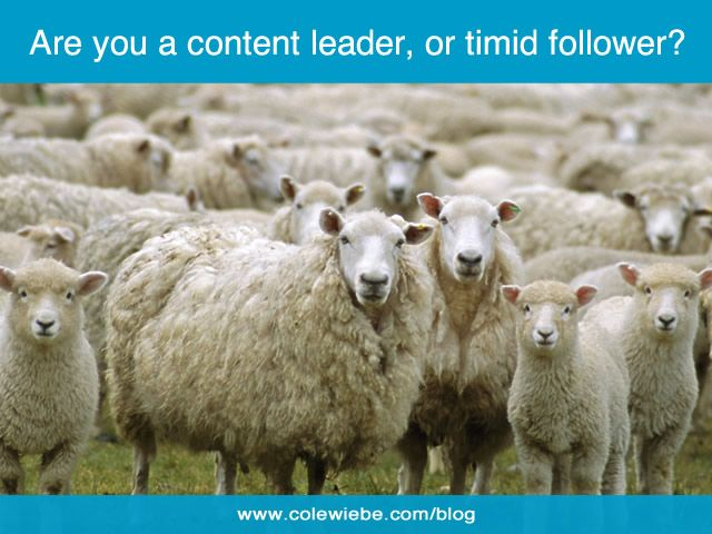 Are You Asking All the Wrong Content Strategy Questions? Are you a content leader, or timid follower?