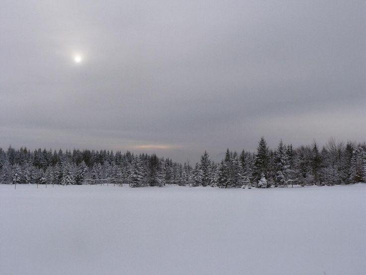 #sun #klubkocestuje #trip #snow #crosscountryskiing #view Výhledy ❄️🎿⛷🗻#naturelovers