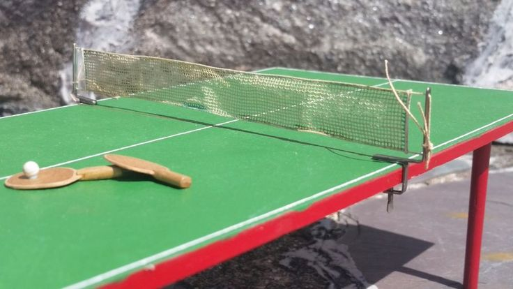Frank Matter - ping pong table and paddles