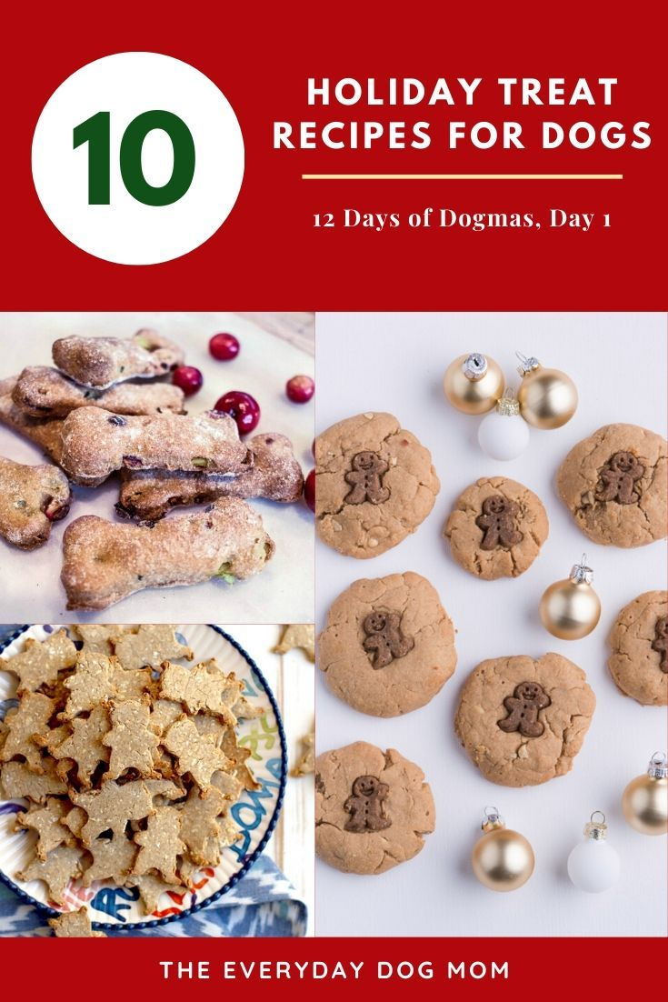 10 Holiday Treats For Dogs The Everyday Dog Mom In 2020 Dog
