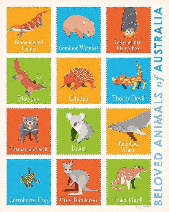 Beloved Animals of Australia retro illustrated by BarockyChocky