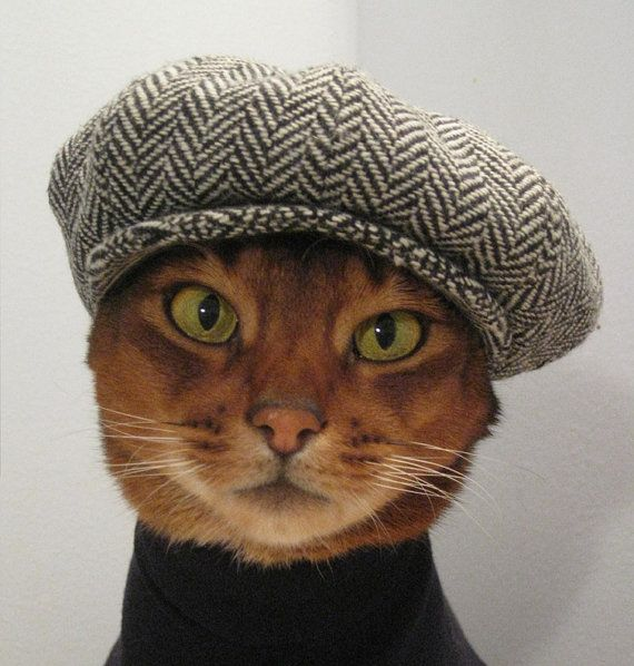 Who can resist a smartly dressed cat, wearing a newsboy cap and turtleneck sweater?! *swoon*    Newsboy Cap for CAT in black/grey herringbone by CatAtelier, $68.00