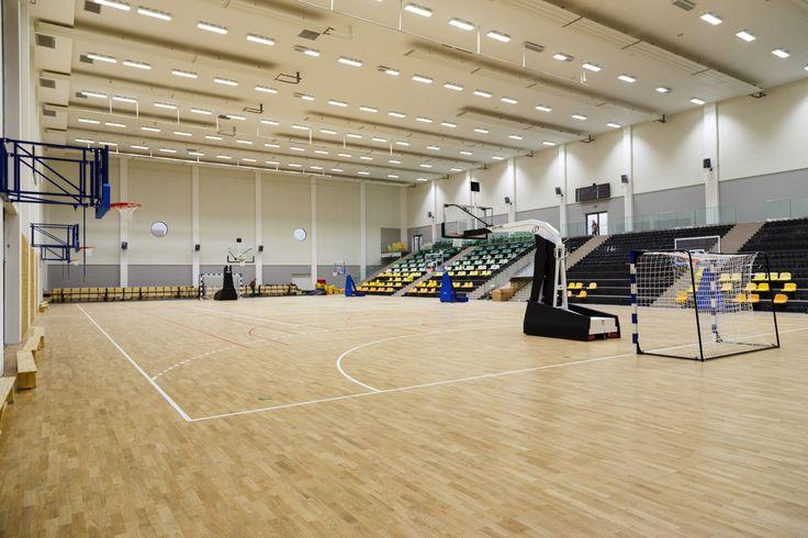 Profesjonalna konstrukcja jezdna Spalding 3,25m, Professional portable Spalding backstop extension 3,25m. Profesjonalne bramki do piłki ręcznej, professional handball goals. Konstrukcje ścienne do koszykówki, Basketball wall-mounted construction - Foldable. Drabinki gimnastyczne, Wall bar