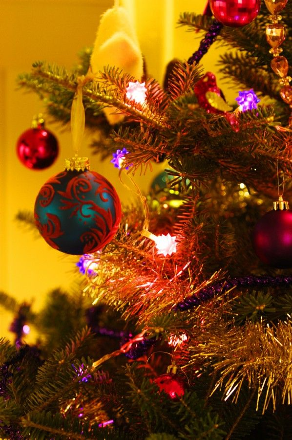 34 best Unique Christmas Getaways images on Pinterest | Christmas ...