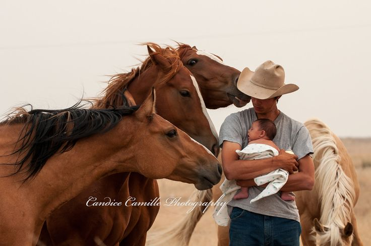 Horses love babies! Daddy and newborn getting to know the horses. Candice Camille Photography