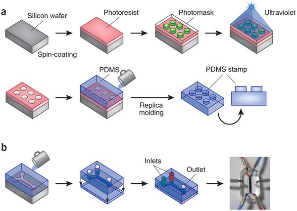 Fabrication Methods For Microfluidic Chips Ders