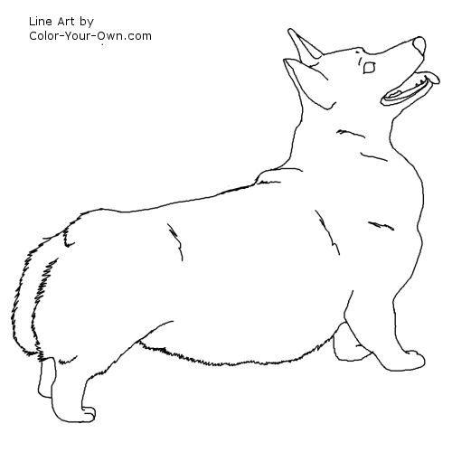 Pembroke Corgi Dog Line Art