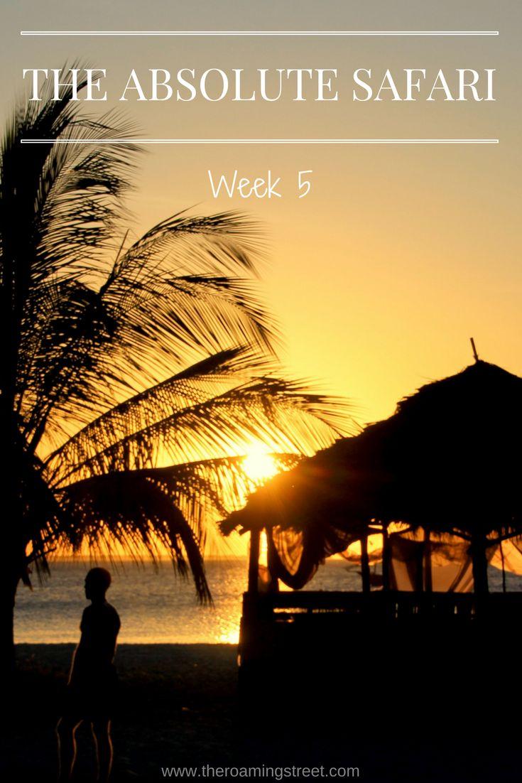 The Absolute Safari Week 5: Zanzibar — The Roaming Street