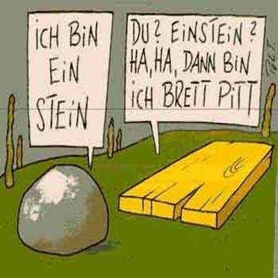 Einstein vs. Brett Pitt