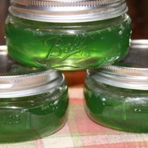 Mint Jelly — Canning Water Bath | Recipes We Love