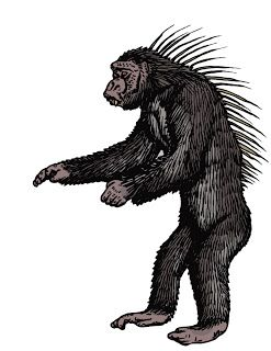 Spiny-Backed Chimpanzee - Around the year 2000, a group of US Navy SEALs witnessed a pack of 13 of these strange animals hunting, and described them as having quills on their backs like a porcupine. The soldiers apparently recorded a video of the beasts, but this is in the custody of the US Government due to its connection with the confidential mission.