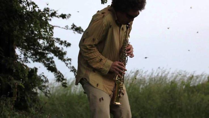 Resultado de imagen para David Rothenberg jazz