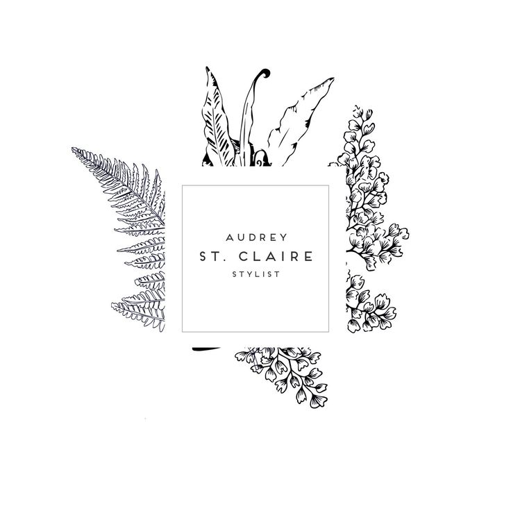 branding, graphic design, botanical, male, monochrome, line drawing