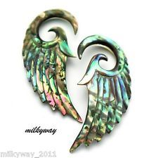 ABALONE ANGEL WINGS EAR GAUGES PLUGS ORGANIC