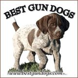5 Minute Training Drills - Gun Dog Breeders Directory