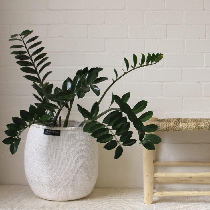 Mifuko Kiondo Basket L - White at Safari Living