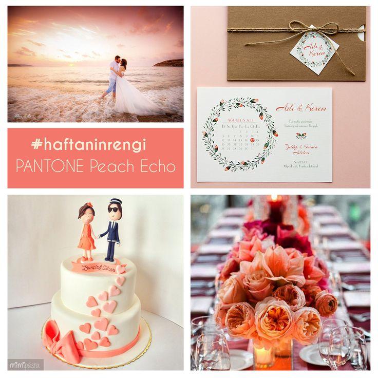 Pantone kataloğundan seçtiğimiz haftanın rengi Peach Echo #haftaninrengi #renkteması #pantone #davetizm #davetiye #suluboya #peachecho