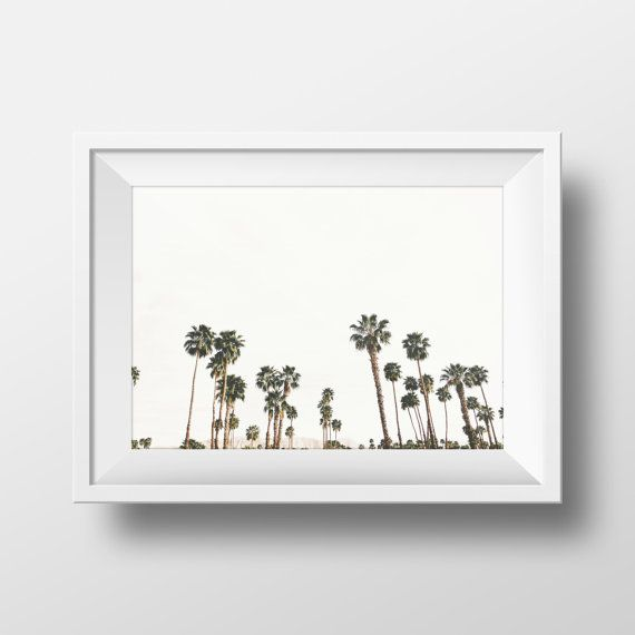 Palm Tree Print California Fine Art Photography | Palm Springs, CA | ETSY