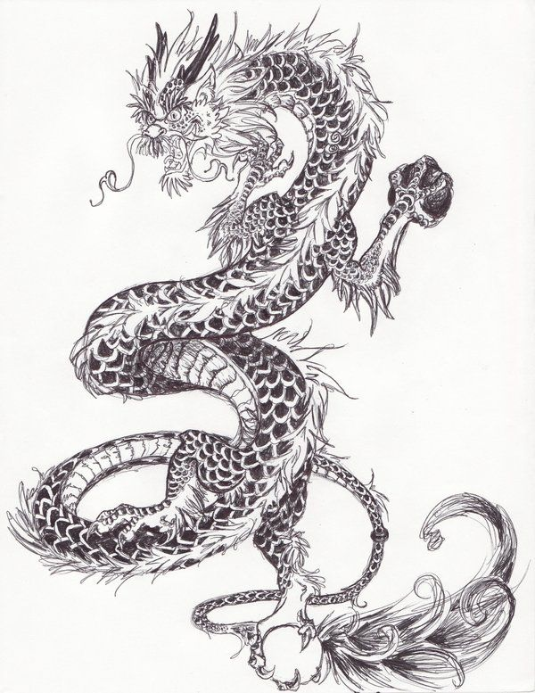 Asian style dragon pics