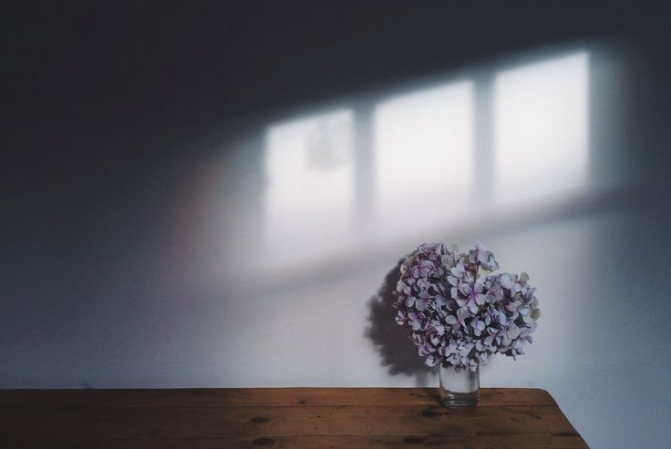 Flowers on kitchen table, shadow of light from window http://meandorla.co.uk/instagram-tips-inspiration/
