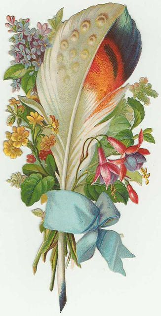 Feather and flowers, with blue ribbon.