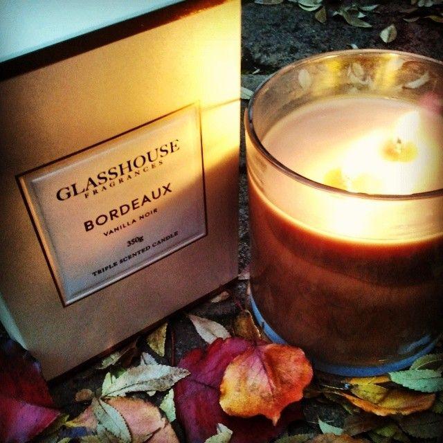 Chocolate, Hazelnut and Vanilla .......Glasshouse 'Bordeaux'
