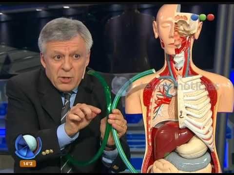 (2) Con un escarbadientes en el corazón - Telefe Noticias - YouTube