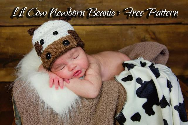 This hat is perfect for that brand moo little babe! Want a quick, cute beanie to work up for that little one that just made his or her debut or will be soon enough? This hat is perfect for those ne…