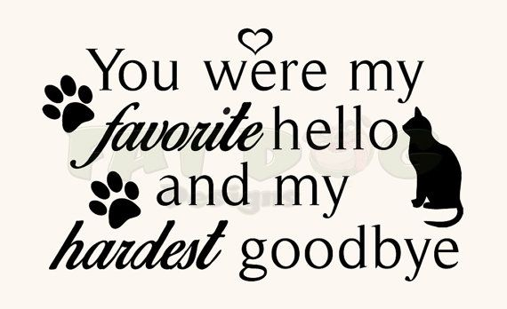 You Were My Favorite Hello And My Hardest Goodbye Pet Remembrance