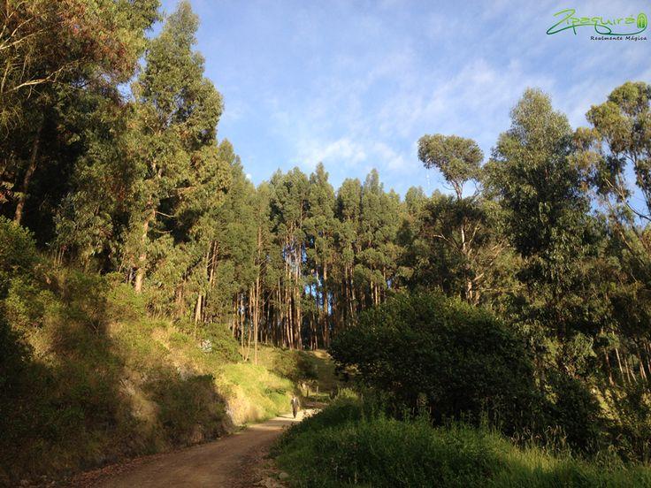 Este lindo paisaje y muchos más te están esperando en #Zipaquirá #Colombia #Zipaquiraturistica #larespuestaesCOlombia