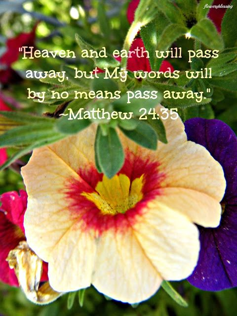 "Flowery Blessing: ""Heaven and earth will pass away, but My words will by no means pass away"" .~ MATTHEW 24:35 (NKJV)"