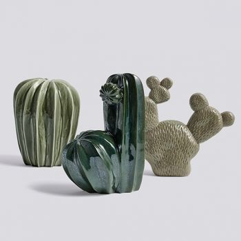 The Cacti by Lina Cofán for Hay