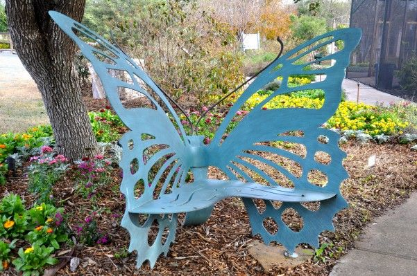 17 Best Ideas About South Texas Landscaping On Pinterest Texas Landscaping Fast Growing Trees