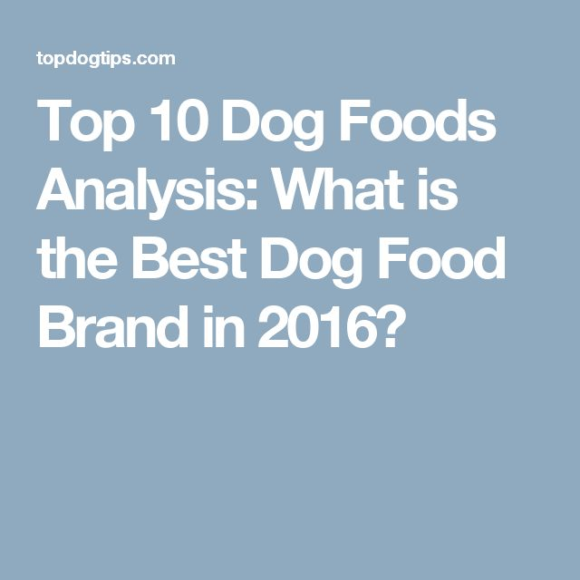 Top 10 Dog Foods Analysis: What is the Best Dog Food Brand in 2016?