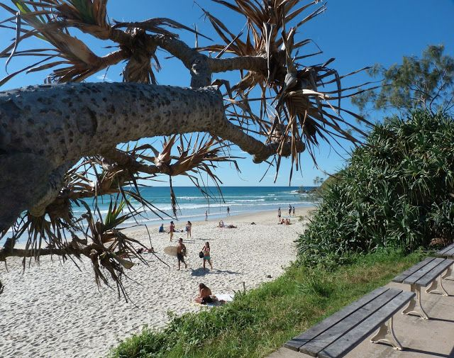 beachcomber's photos : byron beach heaven ~ heading there in a few days and can't wait to get my toes in the sand