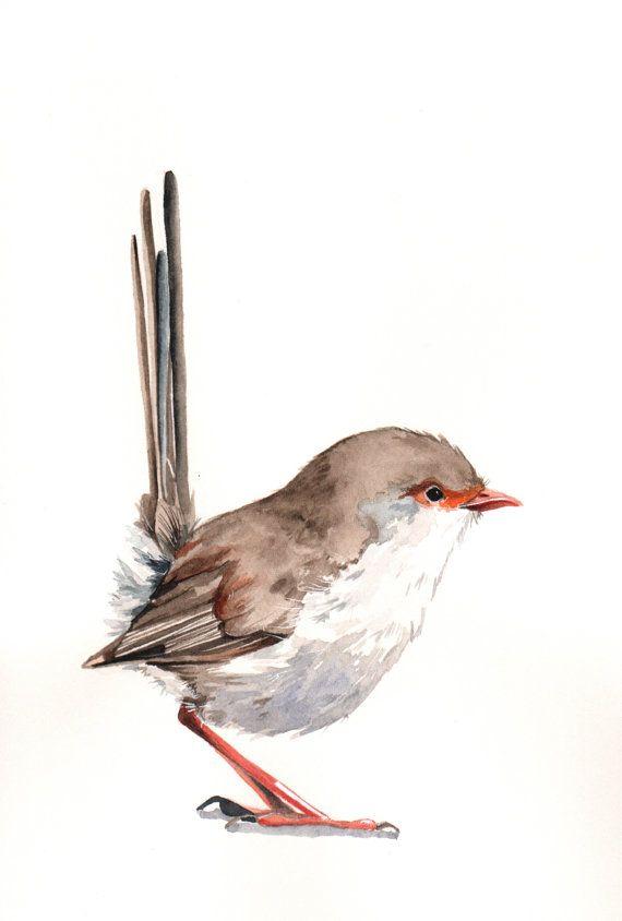 oh, little bird.