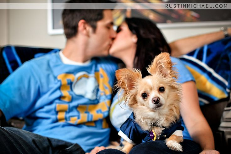 cute dog engagement photo