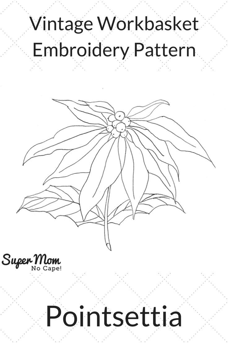 181 best embroidery vintage workbasket patterns images on vintage workbasket embroidery pattern pointsettia click through to download this free pattern on super bankloansurffo Choice Image
