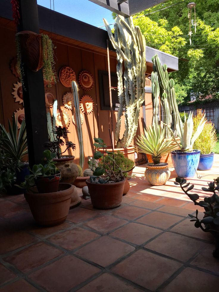 Awesome Mexican Patio, Hacienda Style, Backyard Ideas, Cactus, Outdoor Spaces,  Mexico, Patios, Ideas Para, Haciendas